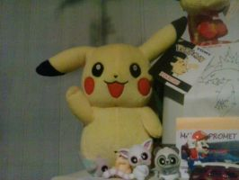 My Pikachu Plush TOMY 9 by PoKeMoNosterfanZG