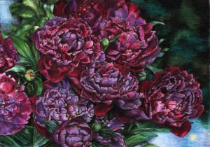 peonies by naglets