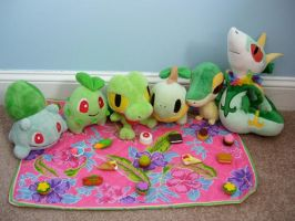 Grass Type Pokedoll Picnic by Fishlover
