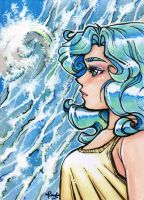 ACEOno30 - Storm is Coming by unconventionalsenshi