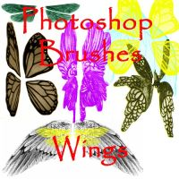 Photoshop WINGS brushes by vaia