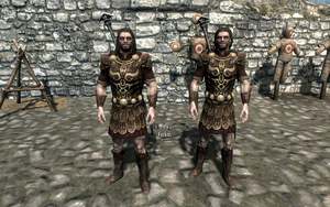 Farkas 'n Vilkas in General Tullius' Armour by Mediziner