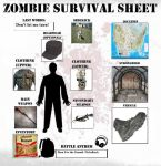 My Zombie Survival Sheet by LoneMoon89