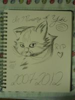 In Memory of Yuki... by b0rderIands