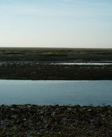Ria Formosa 1 by dracontes