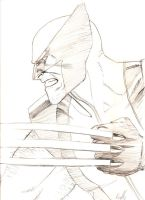 Wolverine con sketch by ReillyBrown