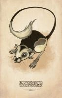 Stephens' Kangaroo Rat by MonicaMcClain