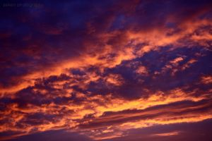 cl41 by aeken