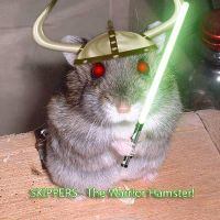 SKIPPERS - The Warrior Hamster by xX-the-Stranger-Xx