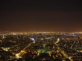 Paris from the Eiffel Tower by varundubey
