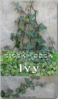 Stock Pack - Ivy by kuschelirmel-stock