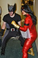 Wolverine and Spider Woman 2 by Sab-Zilla