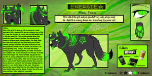 Energie Reference by Sector-C13