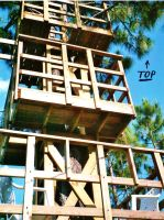 Our Treehouse Built by My Husband {Photo 24} by Empress-XZarrethTKon
