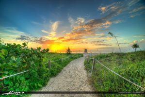 Path-to-Beach-Singer-Island-Florida by CaptainKimo