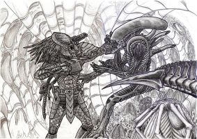 alien vs predator w.i.p by campfens
