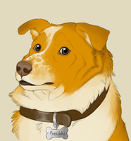 Freckles Doge by CunningFox