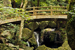 Bridge on the Mt. Kurokami Hiking Trail by TimGrey