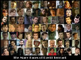 Many Faces of David Tennant.2 by pfeifhuhn