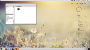 Elementary OS August Desktop by majownik