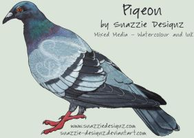 Pigeon Mixed Media by snazzie-designz