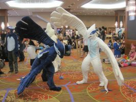 A-Kon 22: Two Lugia by TaoKyuubimon