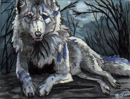 ACEO - Wolf-Minori by Marzzunny