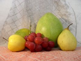 Fruit Composition 13 by SanStock