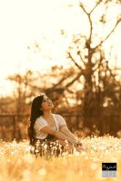 Golden Moment With Felita IV by RacoonFactory