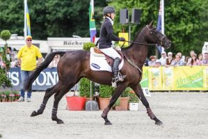 3DE Show Jumping Phase Stock 30 by LuDa-Stock