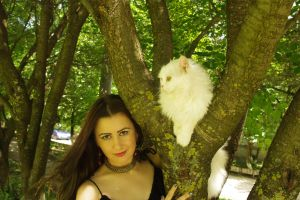 With white cat 06 by Anna-LovelyMonster