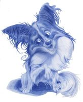 Animal Caricatures No. 19 by SuperStinkWarrior