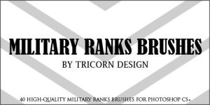 Military Ranks Brushes by TriCornDesign