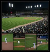 Tigers' game by mcatter