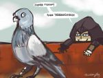 AC: AW YEAH PIGEONS by thunderjelly