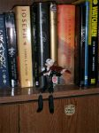 Fiddler on the Bookshelf by SilverDrgnbane