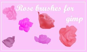 Rose Brushes by Regularamanda