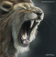 Roar by KatrineH