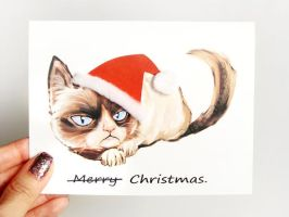 Merry Christmas, Grumpy Cat by sobeyondthis