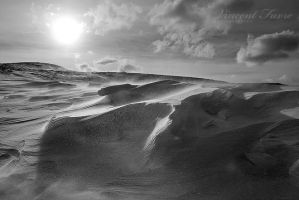 Sculpted by the wind... by vincentfavre