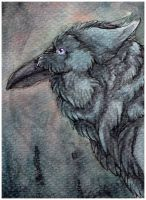 ACEO: LadyFromEast by SaQe