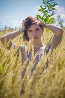 emotions of wheat by kevinfeniks