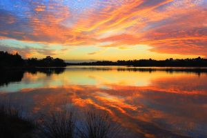 Canning River symphony by westaussie