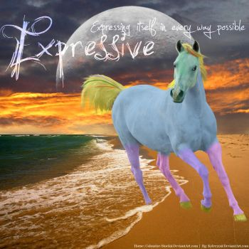 Expressive by Horses-Make-My-Heart
