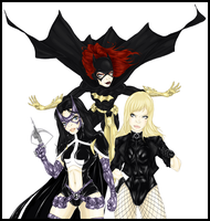 Birds of Prey by batcheeks