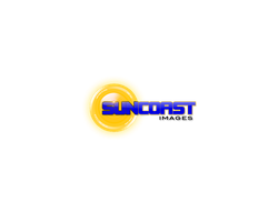 Suncoast Photography Logo by redrum201