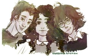 the wizard heroes by Nikadonna