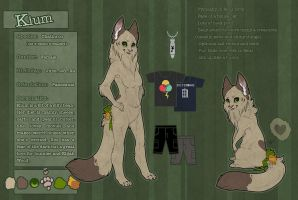 Kium reference sheet 2013 by Kium