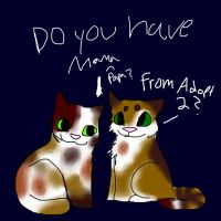 Kittens For Couple Adopt 2 by WolvesRockTheHouseXD