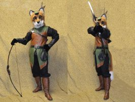 Robin Hood by temperance
